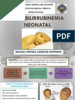 Hiperbilirrubinemia Neonatal-dayana Cristina Andrade Gutiérrez