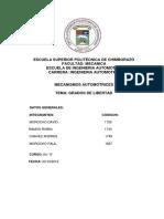 Informe Grados de Libertad.docx