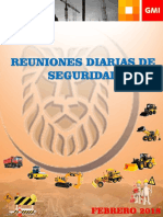 Manual Reunión Diaria SSOMA Feb 2018