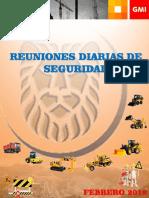 Manual Reunión Diaria SSOMA Feb 2018