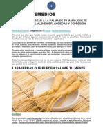 4 Hierbas Que Están a La Palma de Tu Mano, Que Te Protegerán Del Alzheimer, Ansiedad y Depresión-mundo Remedios