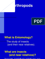 Pwpt Arthropods [Autosaved]
