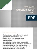 Stellate Ganglion Block (Sgb)