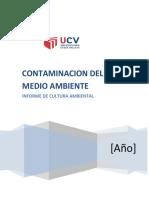 INFORME-DE-CULTURA.docx