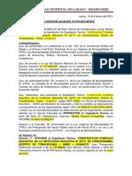 Resolucion Laraos.docx