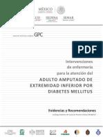 Adulto Aputado de Extremidad Inferior Por Diabetes Mellitus