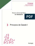 103 Principios de Gestalt I Antologia