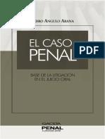 El Caso Penal Base de La Litigacion en El Juicio Oral