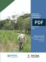 Estructura Económica de las Unidades Productoras Agropecuarias en zonas de influencia de cultivos de coca