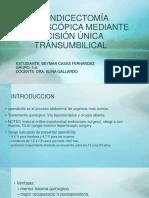Apendicectomía Laparoscópica Mediante Incisión Única