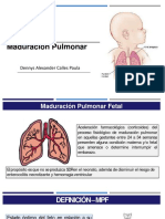 Pruebas de Maduracion Pulmonar Fetal