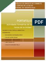 Formato de Portafolio _i Unidad