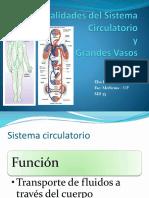 CIA2011-Generalidades-del-Sistema-Circulatorio.pptx
