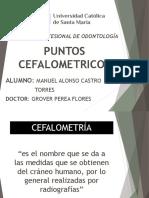 Copia (1)puntos cefalometricos manuel castro dr grover.pptx