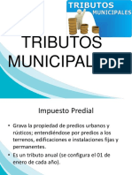 TRIBUTOS-MUNICIPALES