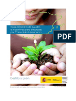 guiaayudas.pdf