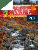 2013-Voice-3