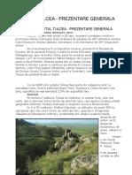 Tulcea Monografie.docx