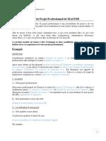 Modèle Projet Professionnel.pdf