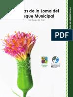 Guía de Plantas - Loma Del Bosque Municipal