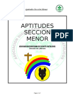 Aptitudes Sección Menor 01 de ARTE