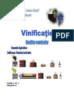 Vinificatie auxiliar.pdf
