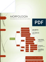 MORFOLOGA_POWER_MODIFICADO.pdf