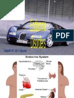 Endocrine System Presentation