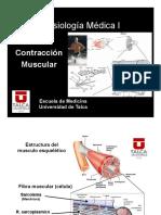 Cl7_Contraccion_Muscular2018