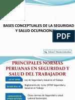 Bases Conceptuales de La Seguridad Ocupacional.
