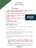 Relatório Processual Arpoador Mgá