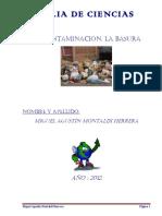 101701891 Feria de Ciencias La Basura