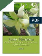 GuiaFloristicaDelSitioArqueologicoNaranjoSaalPetenGuatemala