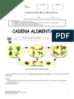 418594 Guia Cadena Alimentaria