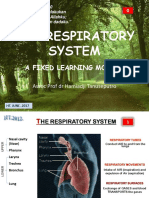 The Respiratory System Flm Wm 2012