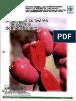 Principales Cultivares Mexicanos de Nopal Tunero(Naranjona) - Copia