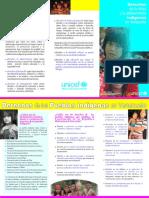 Derechos ninez y adolescencia indigenas.pdf