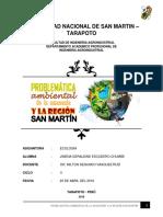 Problemática-ambiental-de-la-amazonía-y-de-la-región-San-Martín.docx