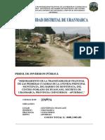 Perfil de Veredas.docx