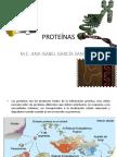 presentacion de proteinas..pptx