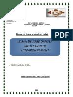 Le Role de Juge Dans La Protection de Le