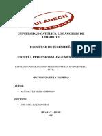 German.reynalte-Patologia en La Madera-responsabilidad Social 1