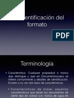 1.2 Identificacion Formato