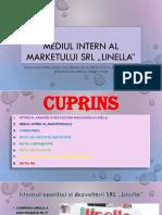 """Mediul Intern Al Marketului Srl """"Linella"""