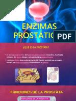ENZIMAS-PROSTÁTICAS.pptx