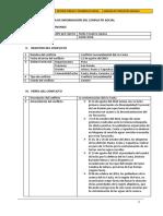 Ficha de Información Del Conflicto Social