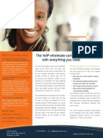 VoIP Innovations_Product Flyer