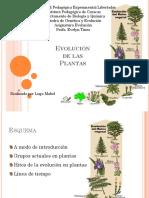 52113472-Evolucion-de-las-Plantas.pptx