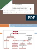 Endocarditis Profilaxis y Tratamiento GUIA 2015 Joel Aldazoro