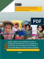 DCExp_Inicial_Primaria_EIB_2012_.pdf